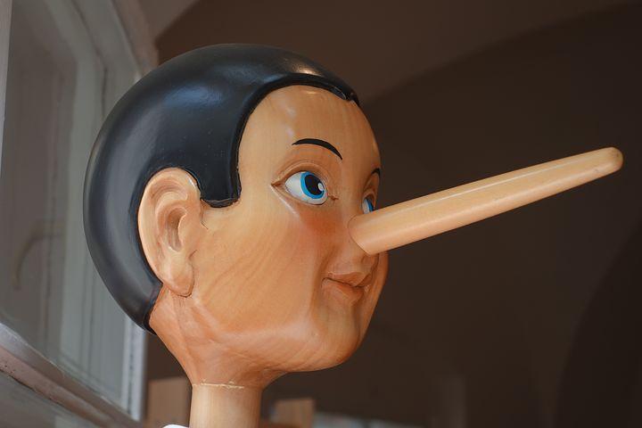 ピノキオ風の写真